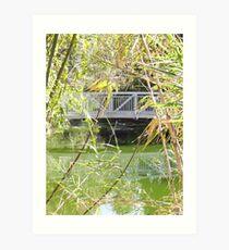 Bridge ove water in color Art Print