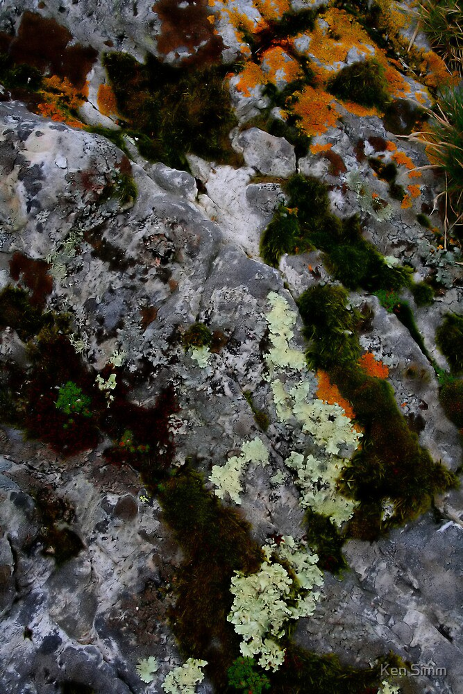 Rock Glen Elg by Kenart