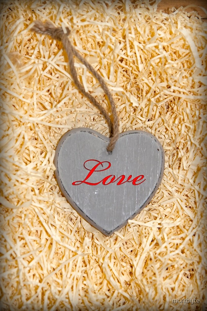 red inscribed wooden love heart in nest by morrbyte