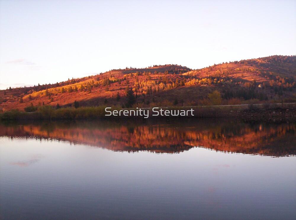 Connie's Pond by Serenity Stewart