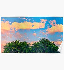 Tropical palm trees sunrise Poster