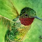 Emeralds and Rubies - Ruby Throated Hummingbird by John Houle