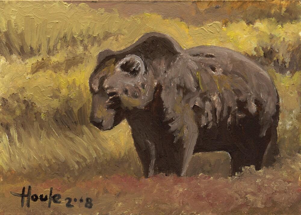 Autumn Splendor - Brown Bear by John Houle