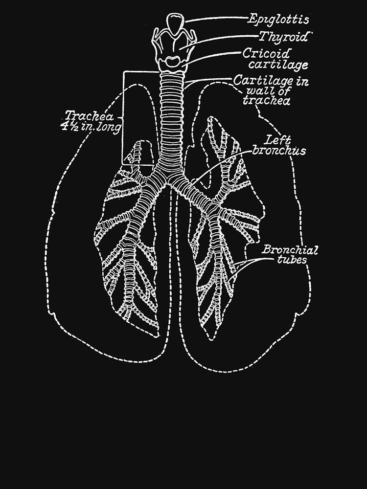 Die Lungen von dillonchr
