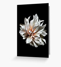 Dahlia Divine Greeting Card