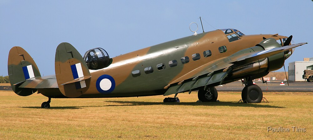 Lockheed Hudson by Pauline Tims