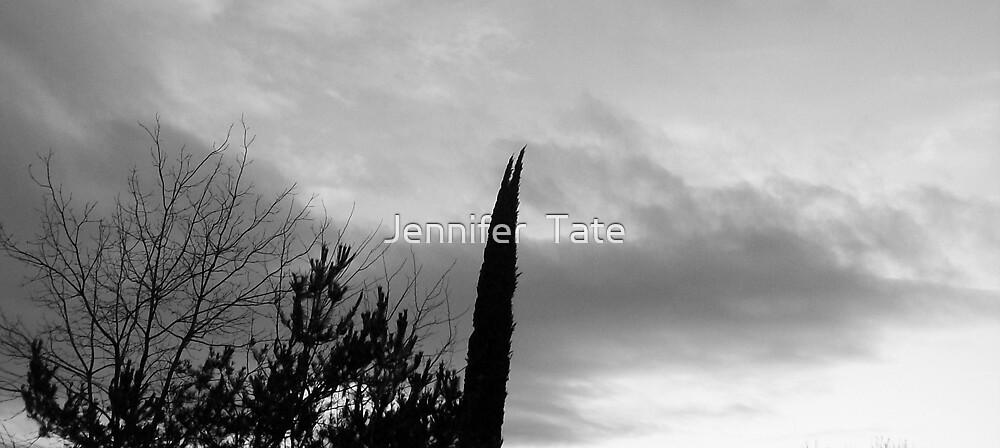 Storm by Jennifer  Tate