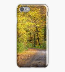 forest path in orange foliage iPhone Case/Skin