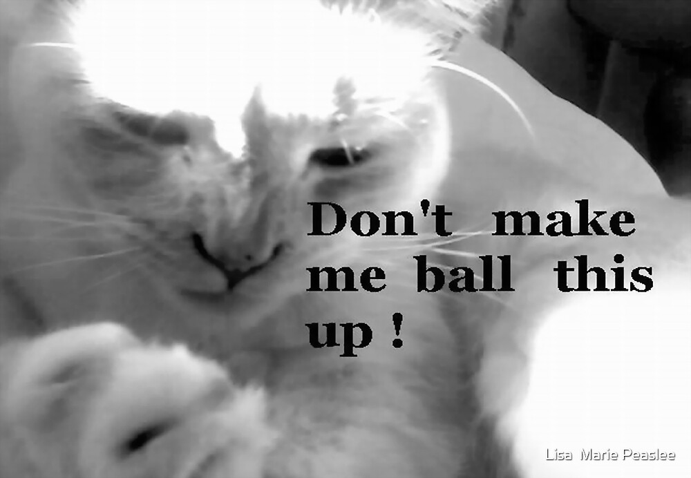 Don't make me ball this up! by Lisa  Marie Peaslee