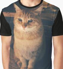 Jordanian Cat Photograph Graphic T-Shirt