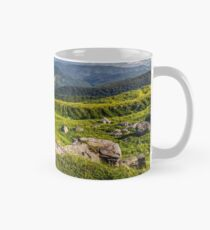 meadow with boulders in Carpathian mountains in summer Mug