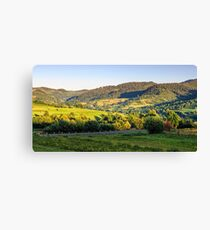 agricultural fields on hills sunrise Canvas Print