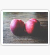Two ripe nectarines Sticker