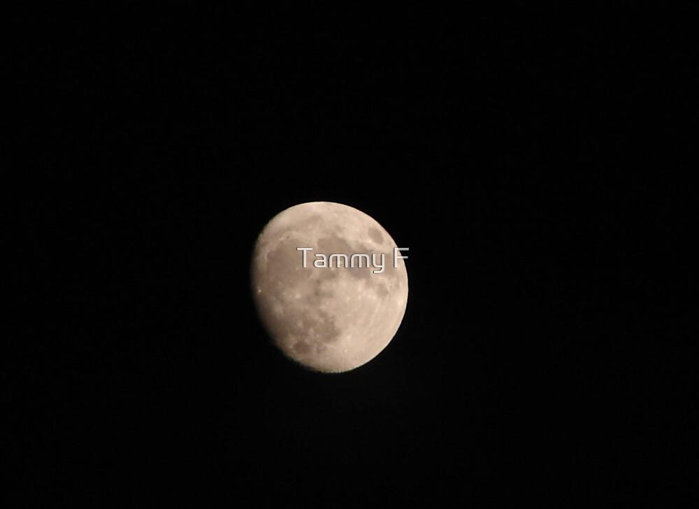 July Moon by Tammy F