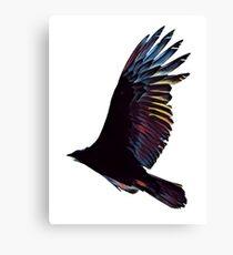 Rainbow Hawk Canvas Print