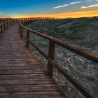 The curved path at Arenales del Sol by Ralph Goldsmith