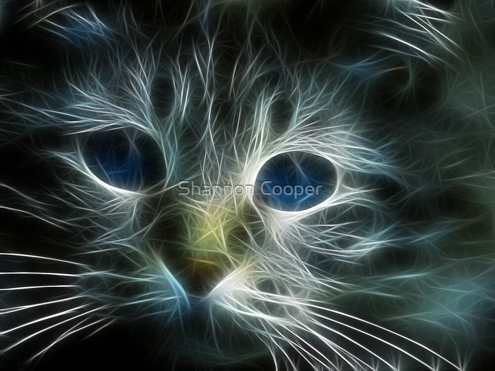 Meow by Shannon Beauford