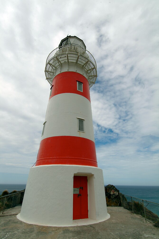 cape palliser lighthouse, North Island New Zealand by nick page