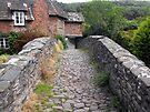 My England. Packhorse Bridge at Allerford, Somerset by trish725