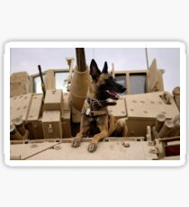A military working dog sits on a U.S. Army M2A3 Bradley Fighting Vehicle. Sticker