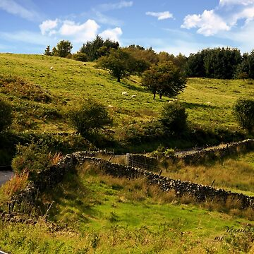 Down to the Dales - Yorkshire by Photograph2u