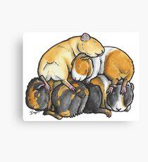 Sleeping pile of Guinea pigs Canvas Print