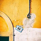 Eighty-four by Silvia Ganora