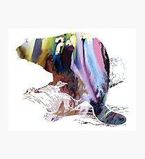 beaver art Photographic Print