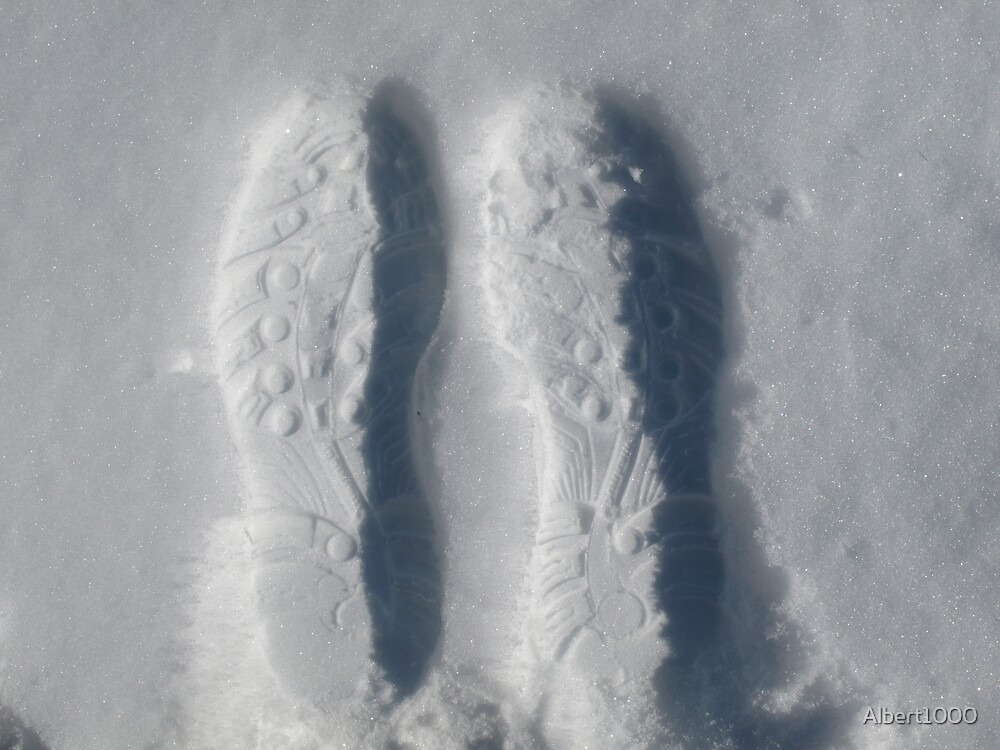 NC prints in snow. by Albert1000