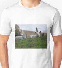 Cute lamb Unisex T-Shirt