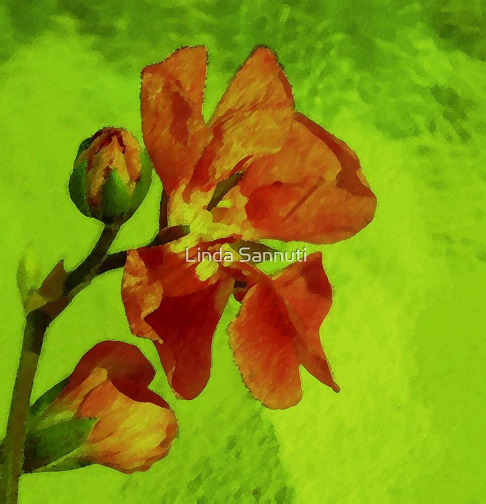 glass flower by Linda Sannuti