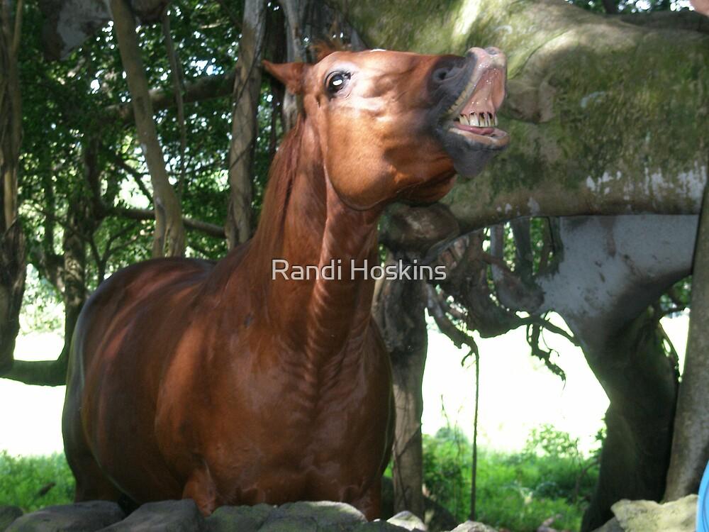 Smiling Horse by Randi Hoskins