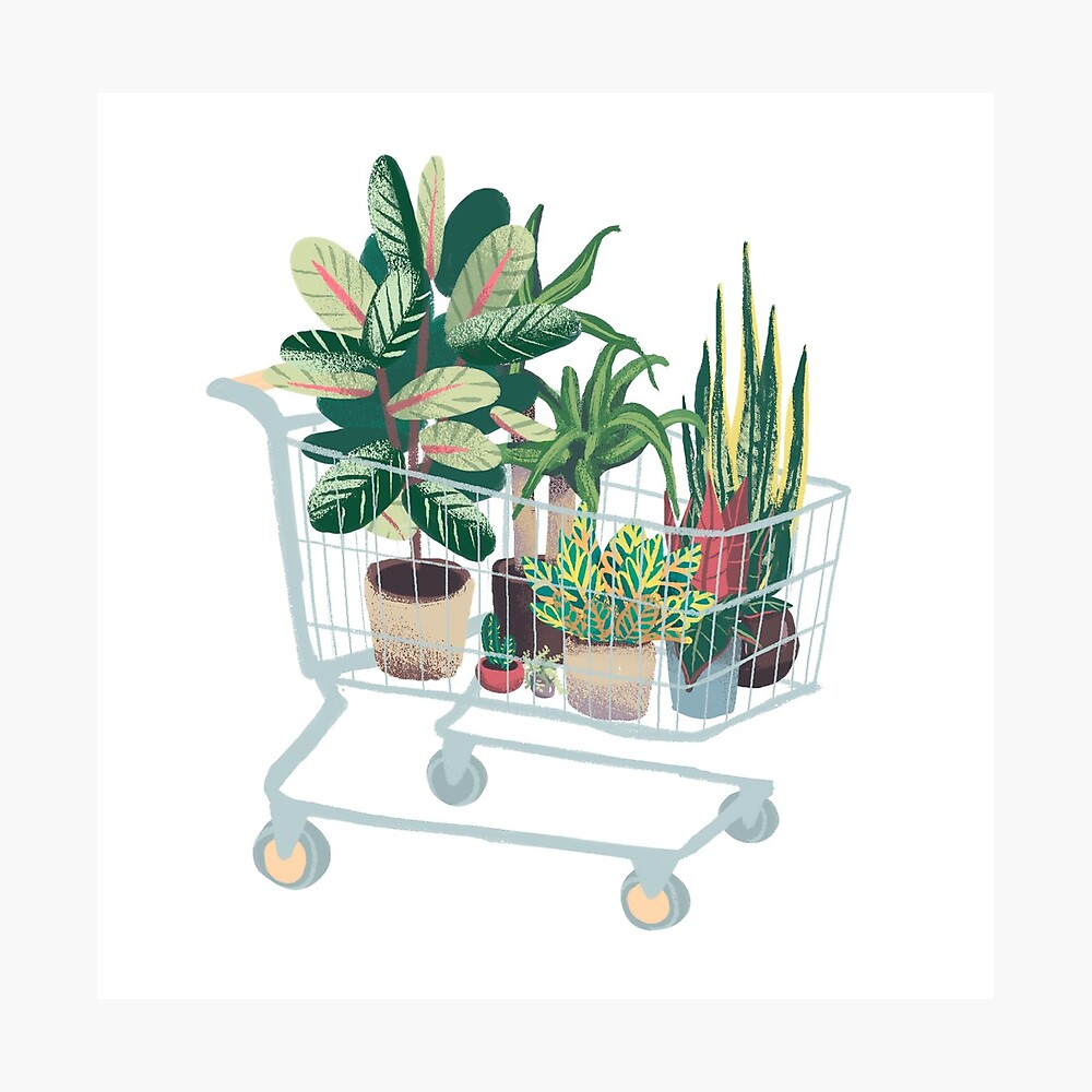 Plant friends Photographic Print