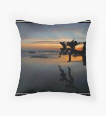 The Day We Left Earth Throw Pillow