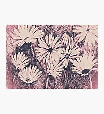 Ink Daisys in Pink Contrast: Print Photographic Print