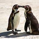kissing couple by nakomis