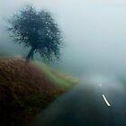 One Tree by Angelika  Vogel