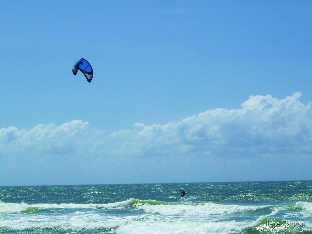 Kite Surfer by Ilene Clayton