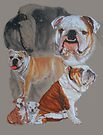 English Bulldog/Ghost by BarbBarcikKeith
