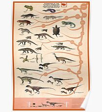 Tetrapods of the Kayenta Formation, USA Poster