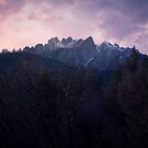 Castle Crags SP, Dunsmuir Ca by Tracy Jones