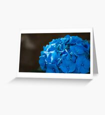 Blue Pedals Greeting Card