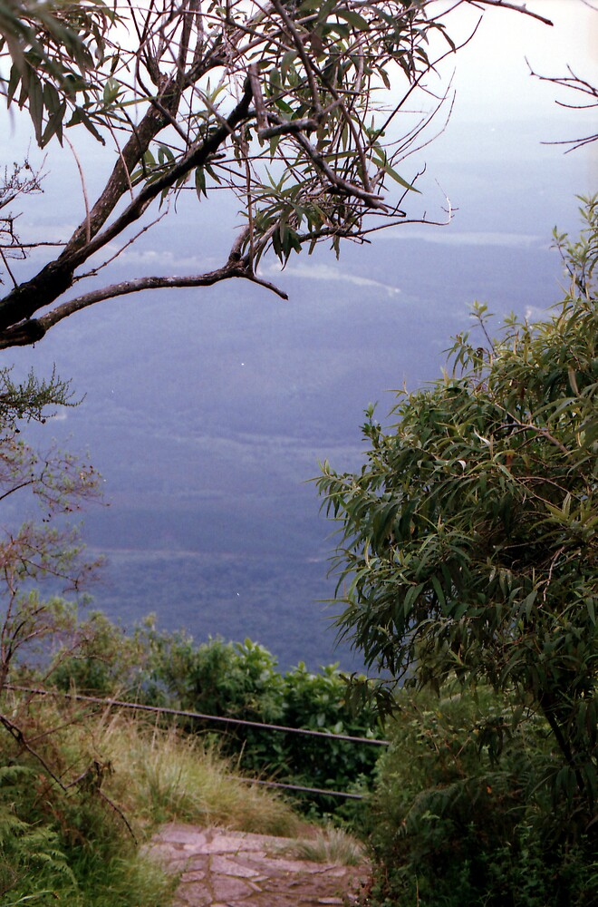 Gods Window, Mpumalanga by Robert Deaton