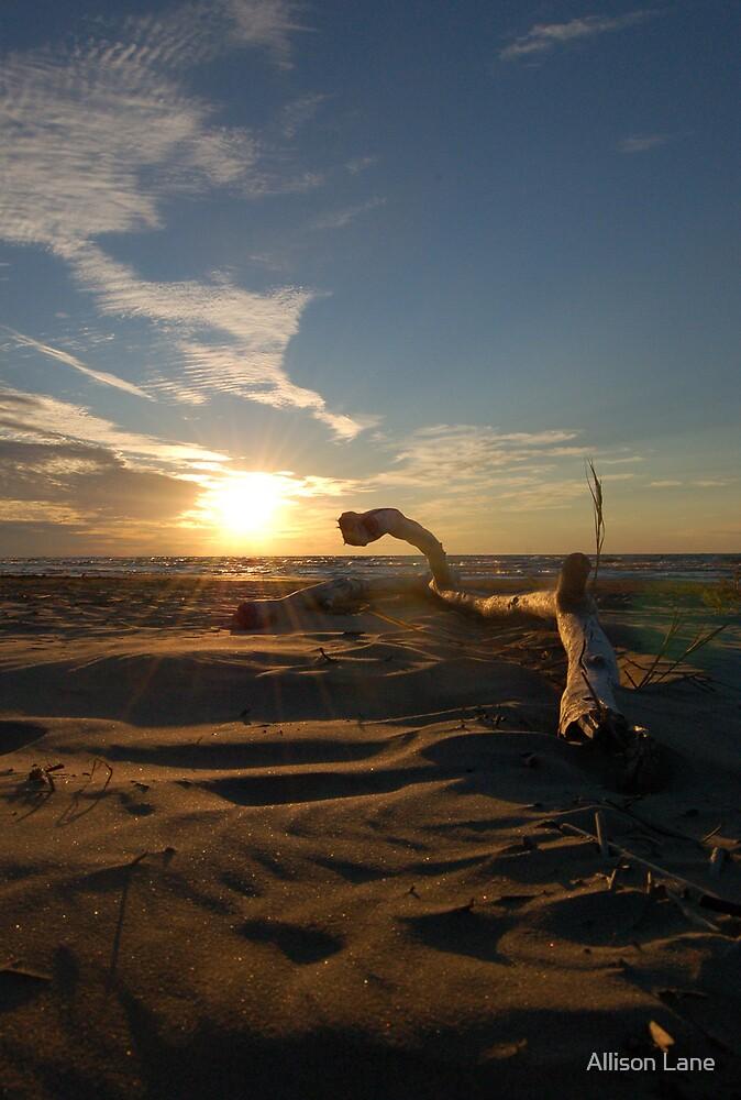 Ipperwash Sunset by Allison Lane