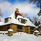 Winter Fairy Tale House by Maryna Gumenyuk