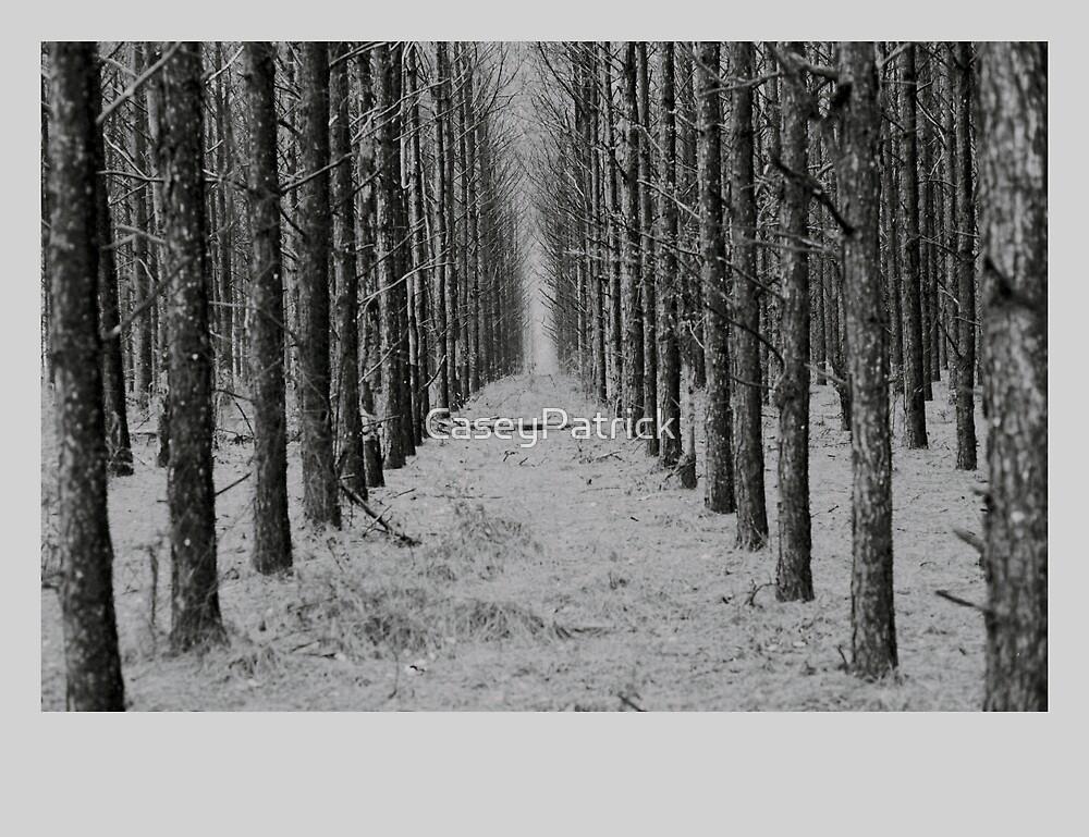 Georgia Pines by CaseyPatrick