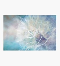 Pastel Party Photographic Print