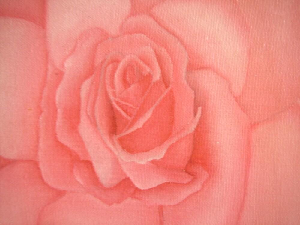 rose by Elizabeth  Fennessy