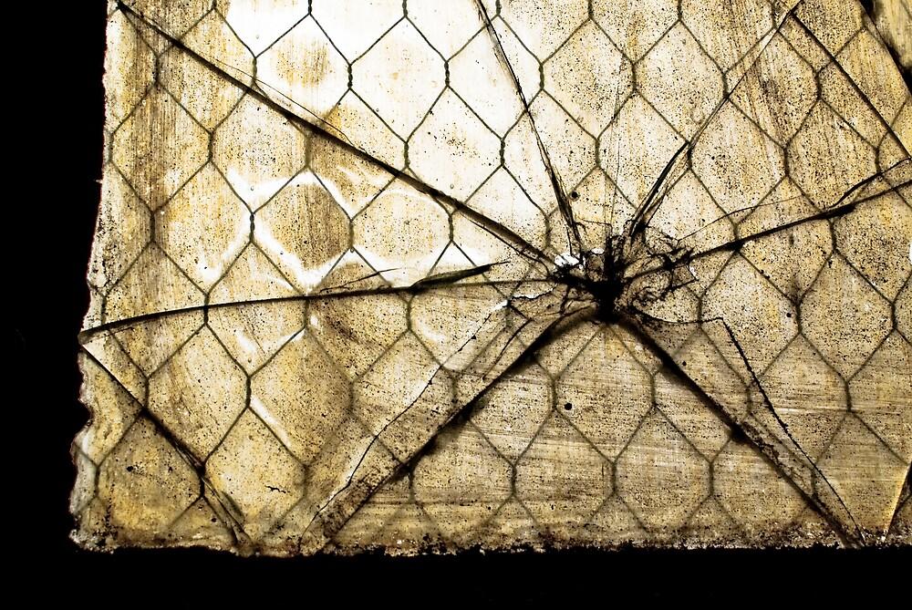Broken by Rod  Adams