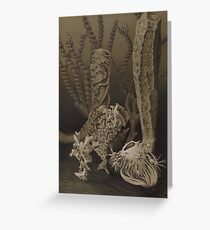 Natural History Glass Sponges Greeting Card